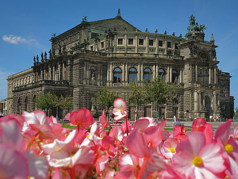 Fotos Semperoper mit Blumen